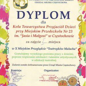 t900_900_dyplom-2