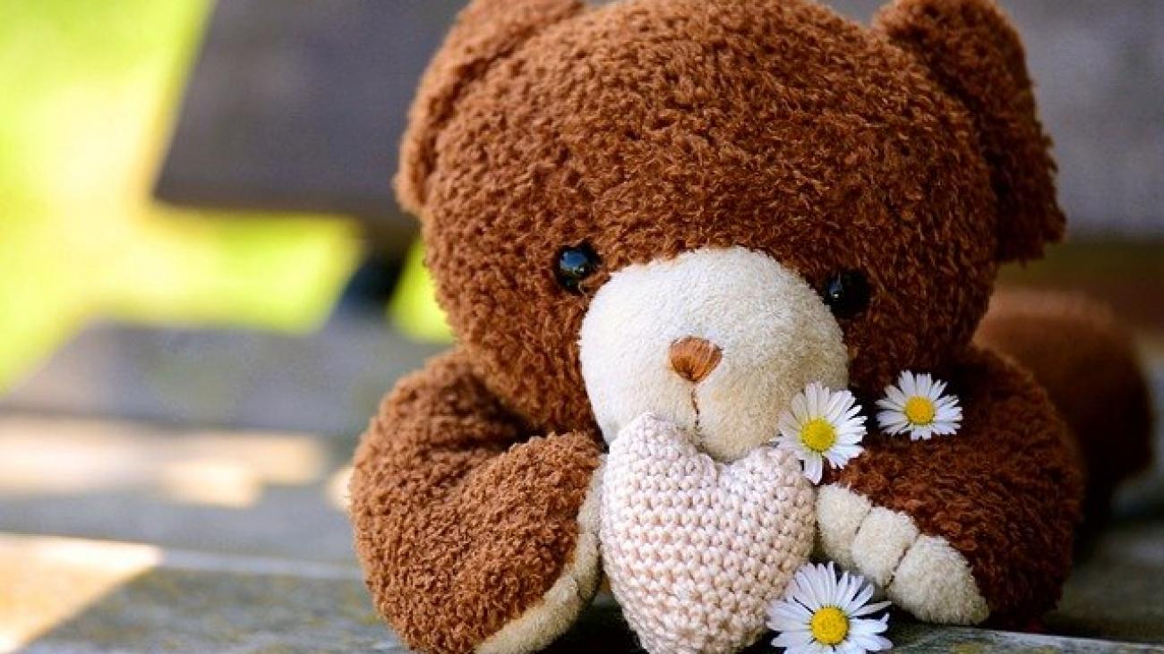 teddy-5073285_640